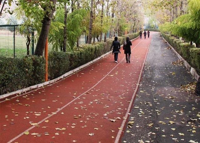 جاده تندرستی و تجهیزات ورزشی در سرا های دانشجویی احداث می گردد