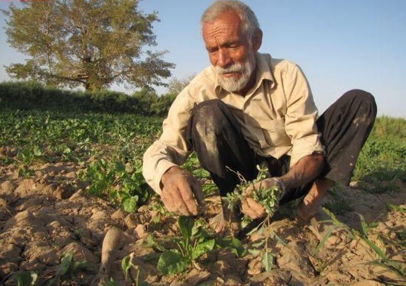 خبرنگاران کمپین روستای بدون کرونا در یزد راه اندازی شد