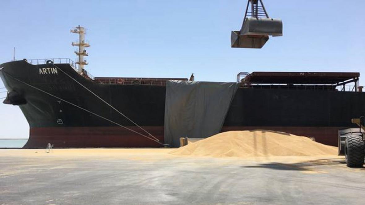 پول محموله های گندم در سیستان و بلوچستان پرداخت شد