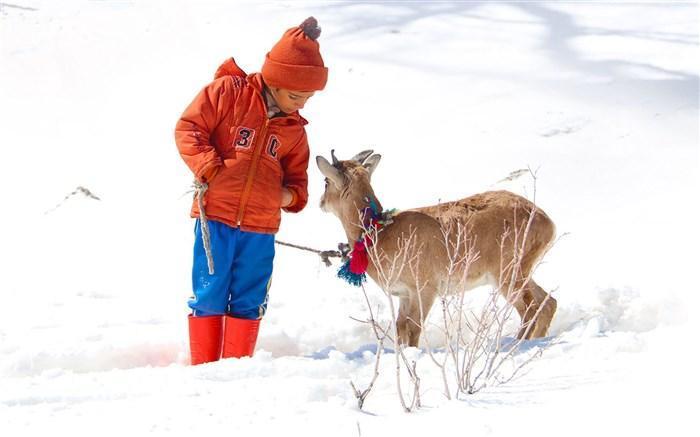 حضور پیروز فیلم سینمایی اسکی باز در جشنواره های بین المللی
