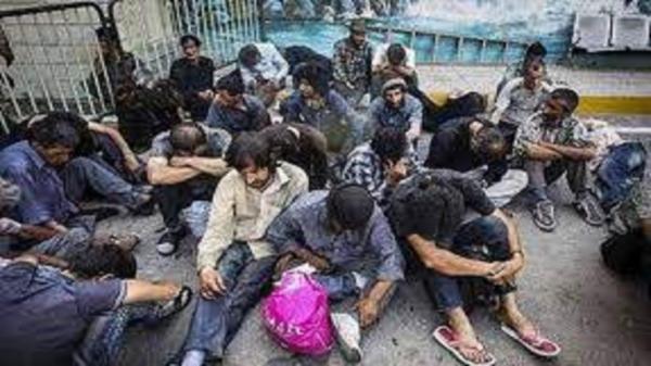 اجرای طرح پا کسازی بوستان های فردیس از وجود اوباش و معتادان متجاهر